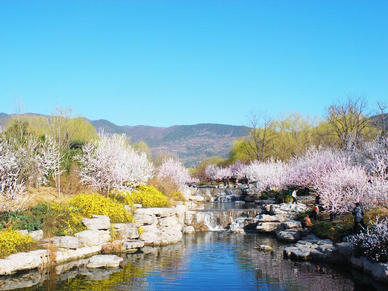 北京植物园是国家级aaaa旅游景区